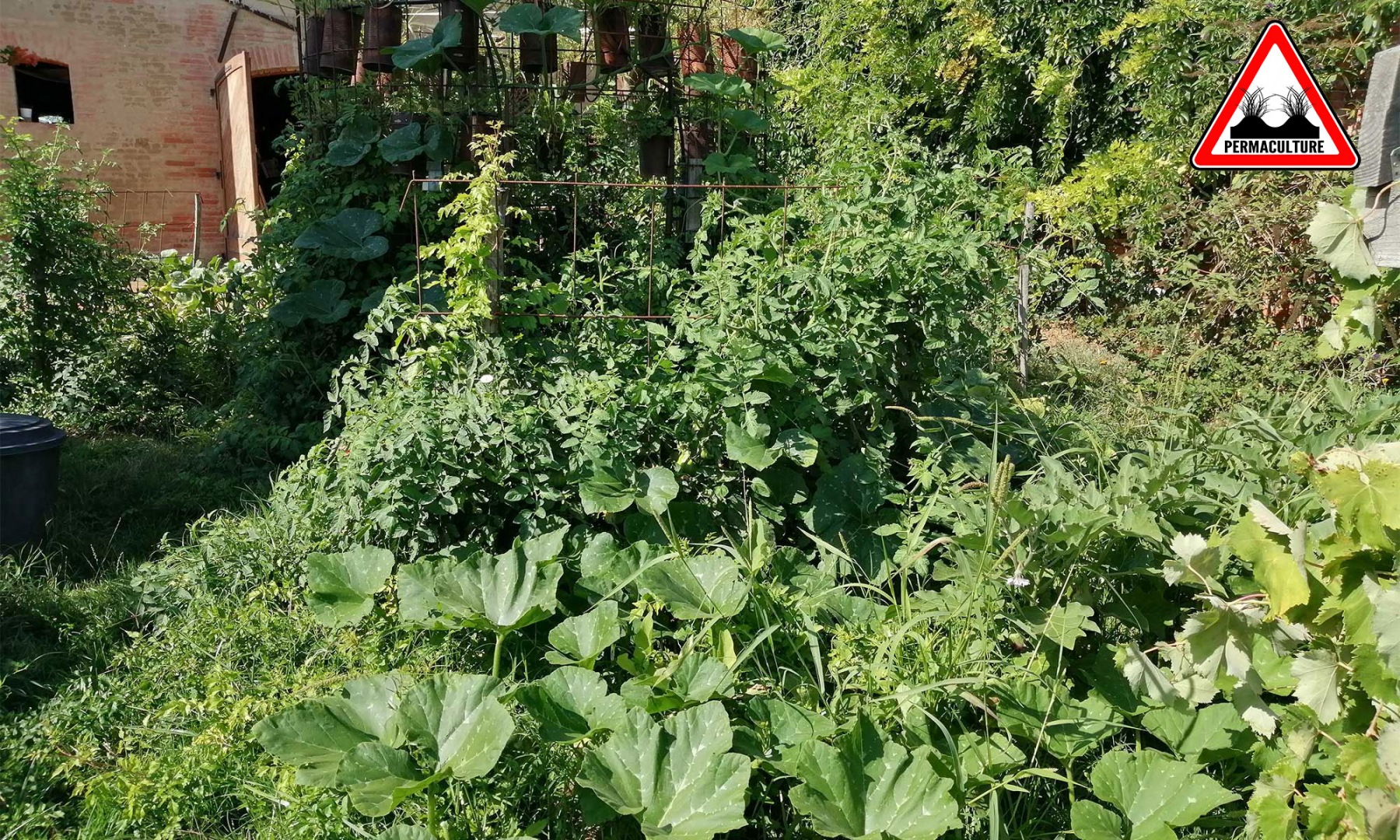 atelier-jardin-lasagne-les-ateliers-en-herbe