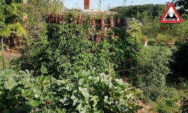 atelier-potager-lasagne-2019-ateliers-en-herbe