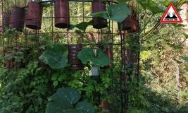 tour-legume-oasis-jardin-de-baugnac
