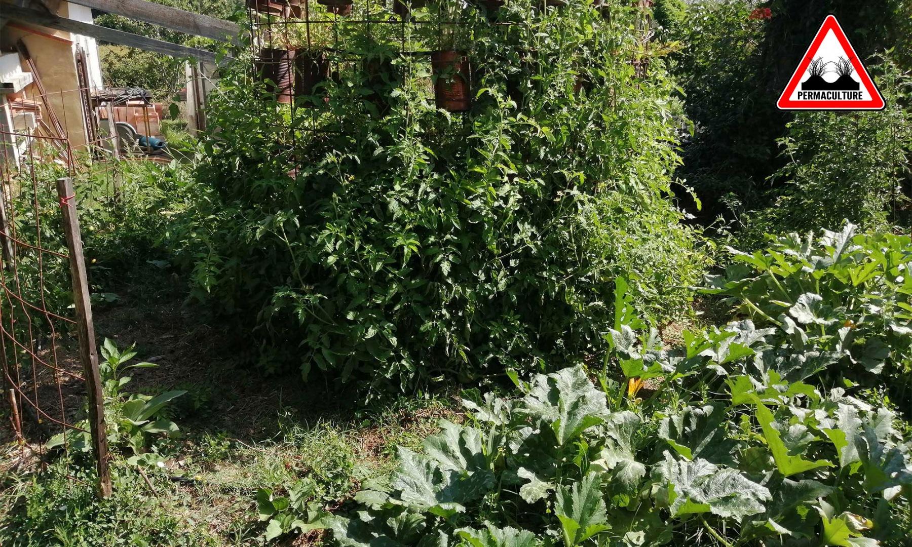 oasis-ressource-jardin-lasagne-baugnac