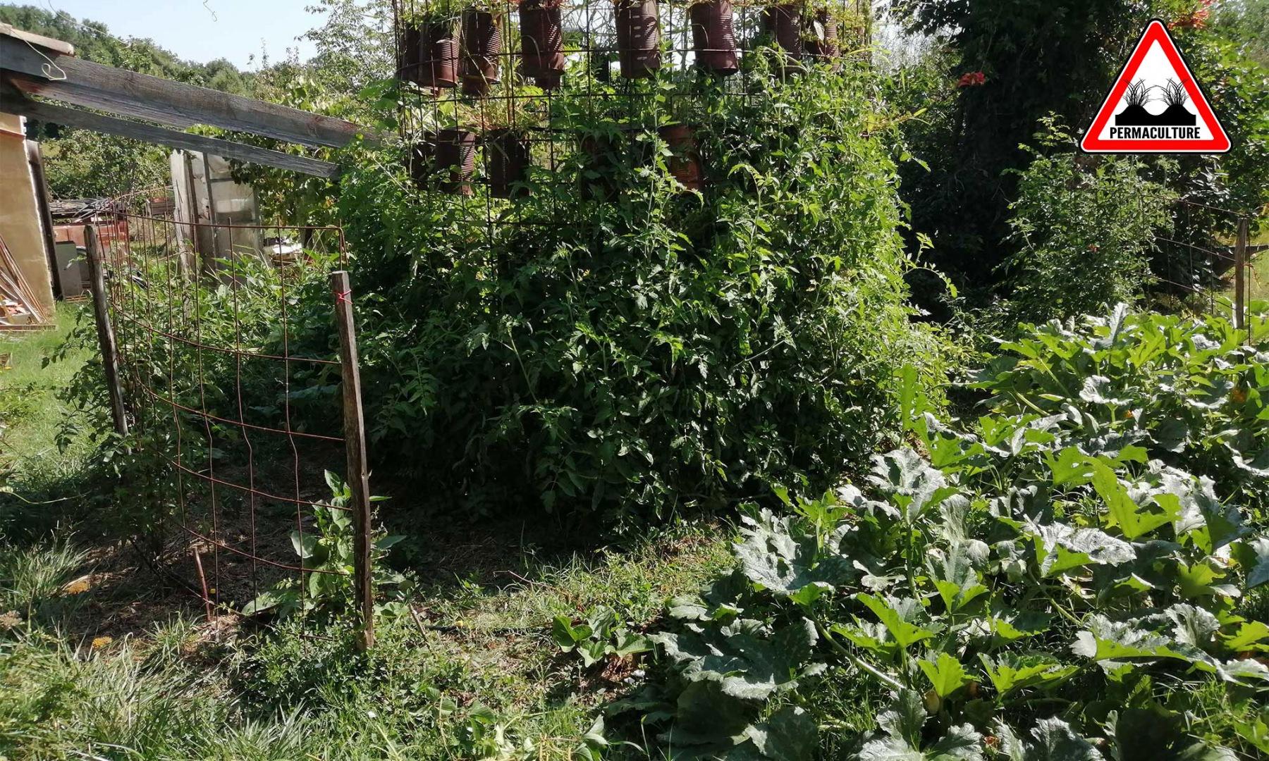 potager-lasagne-2019-les-ateliers-en-herbe