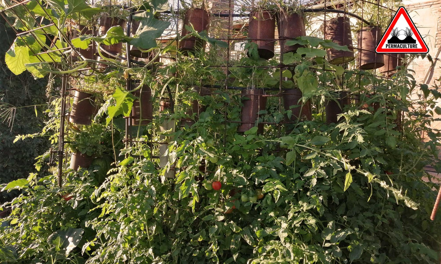 production-jardin-lasagne-baugnac