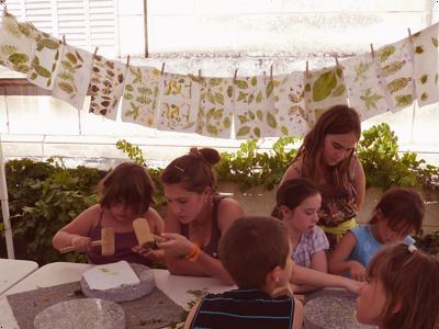 Ateliers enfants et teintures végétales : Les Ateliers en Herbe
