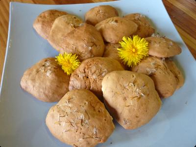 Biscuit aux pissenlit et cuisine sauvage : Les Ateliers en Herb