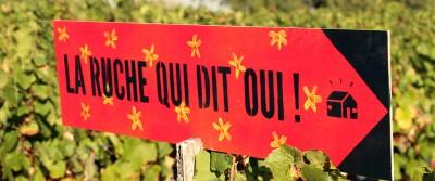 Circuit court social et solidaire de Lavalette !