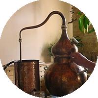 Atelier cueillette et distillation - Les Ateliers en Herbe.