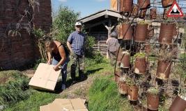 recuperation-carton-jardin-lasagne-ateliers-en-herbe