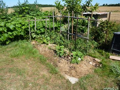 Conception du Potager en Lasagne : Les Ateliers en Herbe