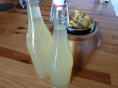 Limonade de sureau et cuisine sauvage : Les Ateliers en Herbe