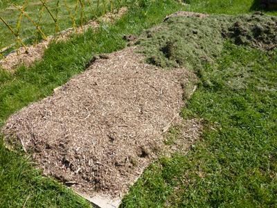 Succession de déchets pour le potager en lasagne : les Ateliers en Herbe