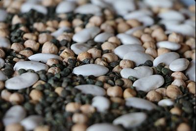 Exemple de légumineuses : haricots, pois-chiches, lentilles : Ruche Est Toulouse