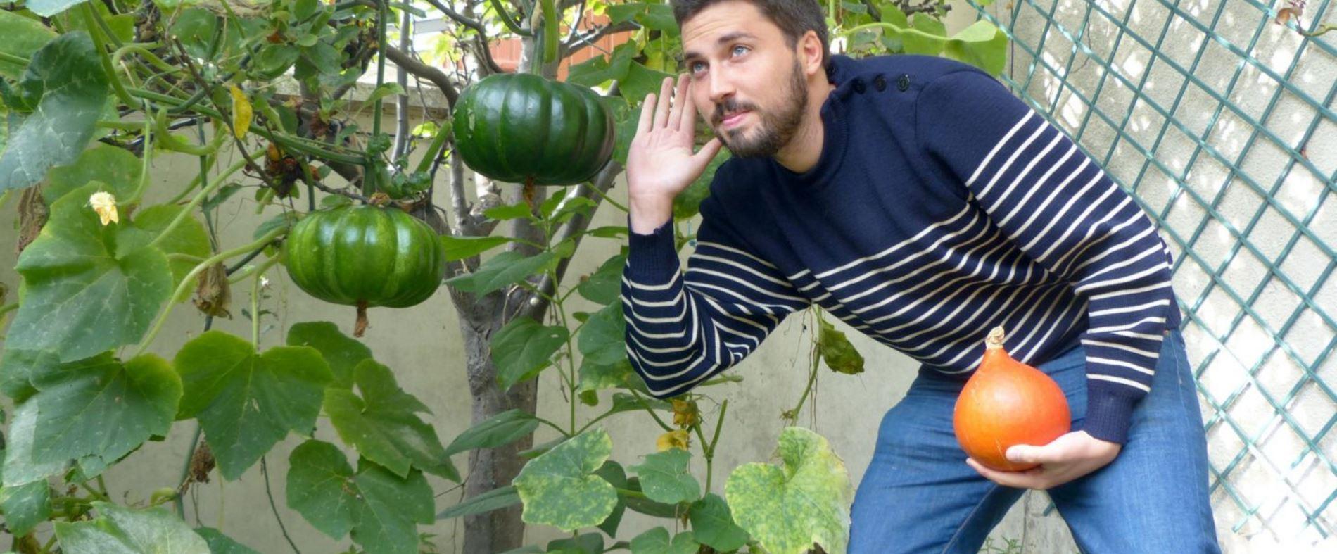 Pourquoi écouter les plantes de son jardin ?