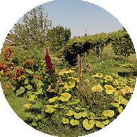 Confection jardin en lasagne - Ateliers en Herbe.
